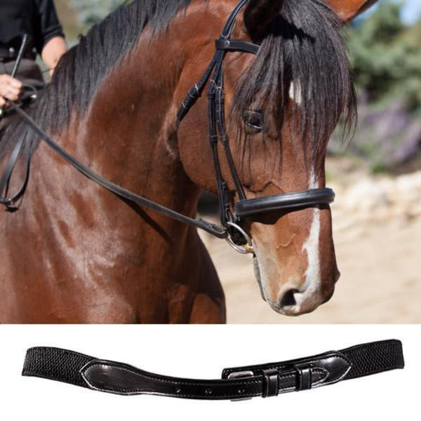 English Hunter Jumper Bridle