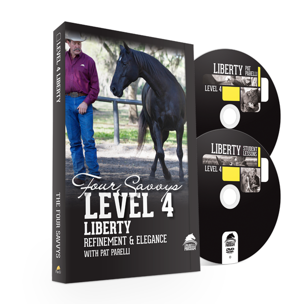 Savvy Series Level 4 Liberty