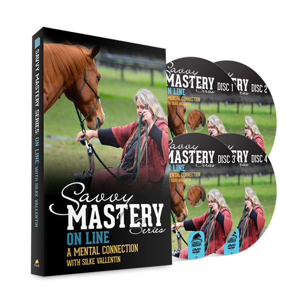 Savvy Mastery Series - OnLine: A Mental Connection w/ Silke