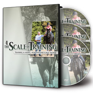 The Scale of Training Part I