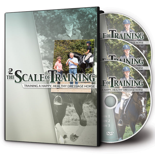 The Scale of Training Part II