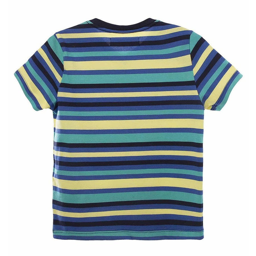 Striped Blue/Yellow