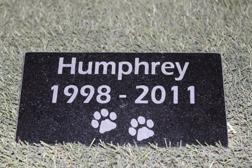 Granite Pet Memorial with Name and Years  4 inches x 8 Inches