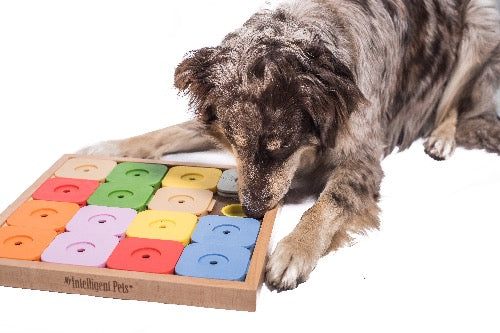 Dog' Sudoku Medium Expert Genie