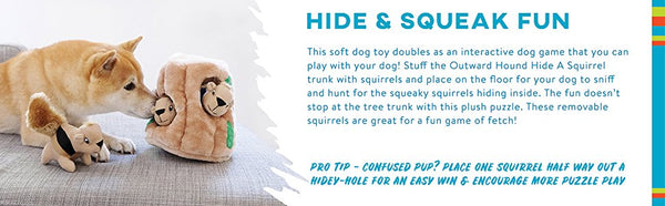 Hide A Squirrel