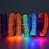 Safety Pet Collar With LED And Printed Design By I Love Dogs Society