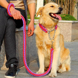 Big Dog Plaited Leash And Collar Set