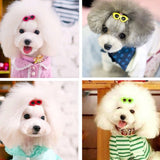 *Restock!* 10 Pcs/Set Special Dog Sunglass Hairpin Accessory