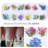 3D Dried Flower Theme | Nail Art Decals