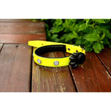 Premium Series - Multi LED Safety Pet Collar Version 1