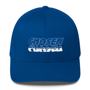 CHOSEN Flex Caps - Be Ye AWARE Clothing