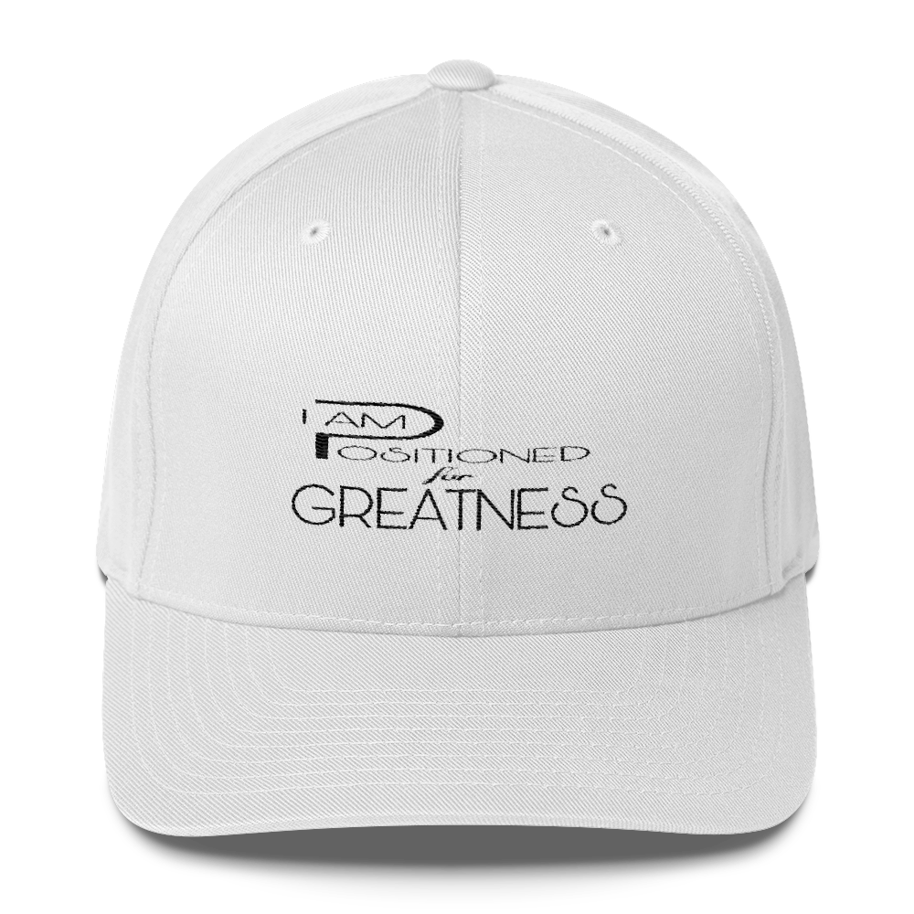 Positioned for Greatness Flex Caps - Be Ye AWARE Clothing