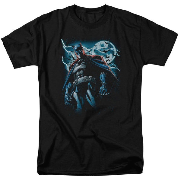 Batman - Stormy Knight t-shirt
