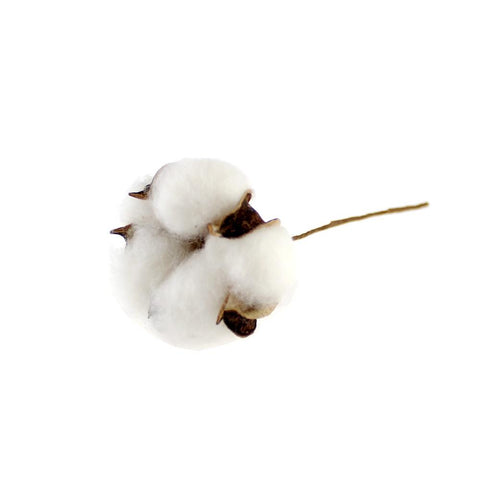 Single Cotton Boll Picks DIY Supplies 1000pcs/lot: Item No.64112