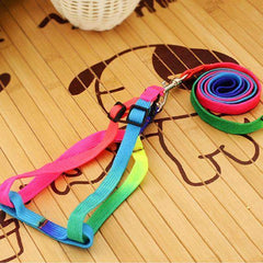 1x Adjustable Rainbow Color Dog Leash and Harness