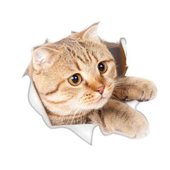ADORABLE - 3D Cat Wall Sticker - Hole View