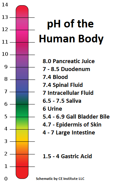 The pH of Skin for Massage Therapists, Salon & Spa Service Providers
