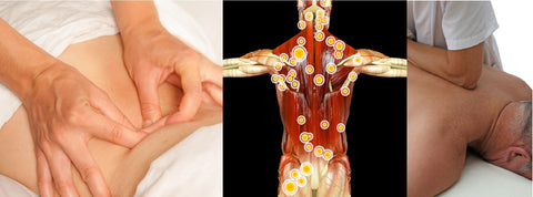 12 CE Hour Trigger Point Therapy & Myofascial Release 2 DAY CLASS $185