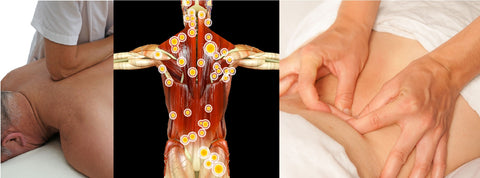 12 CE Hour Trigger Point Therapy & Myofascial Release $185