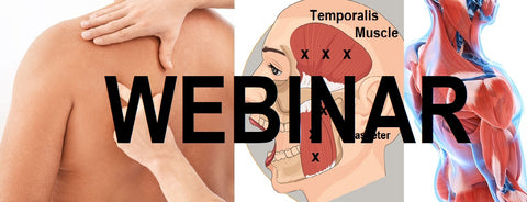 12 CE Hour Trigger Point & Neuromuscular Therapy Basics Live Interactive Webinar