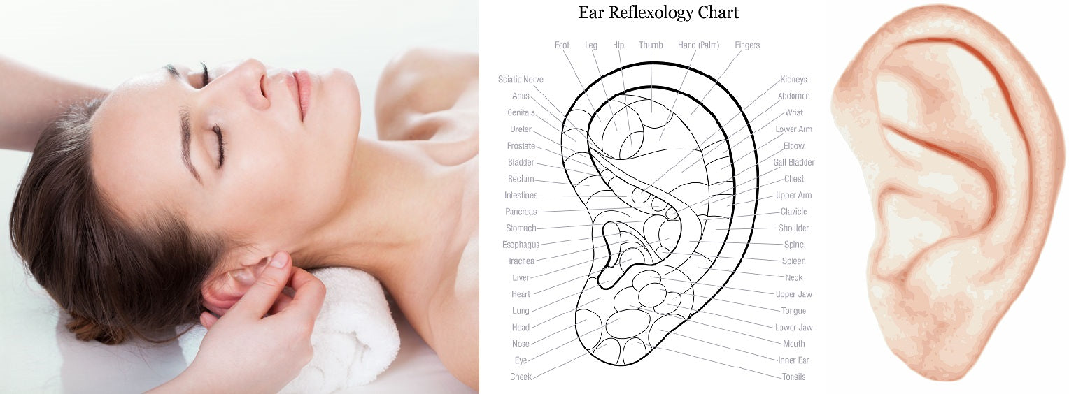 3 CE Hour Ear Reflexology $50