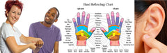 6 CE Hour Hand & Ear Reflexology