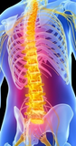 6 CE Hour Medical Massage: Back Dysfunction