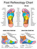 12 CE Advanced Foot Massage & Foot Reflexology
