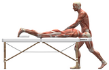 12 CE Advanced Muscular Therapy & Orthopedic Joint Overview Live Interactive Webinar