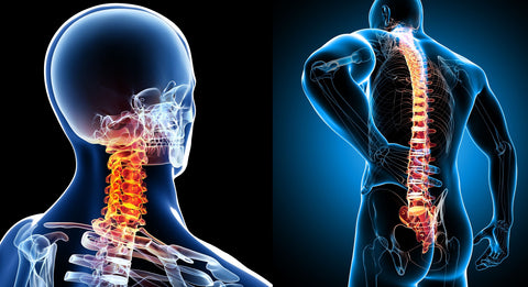 6 CE Advanced Myofascial Deep Tissue: Neck & Back $95