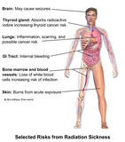 12 CE Hour Oncology Education & Bodywork for Cancer Patients Live Interactive Webinar