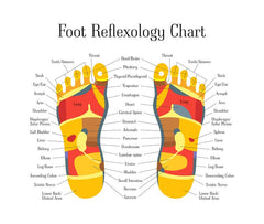 6 CE Hour Foot Reflexology $95