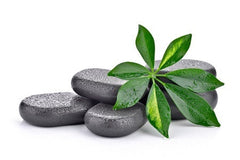 3 CE Hour Intro to Hot Stone Massage $50