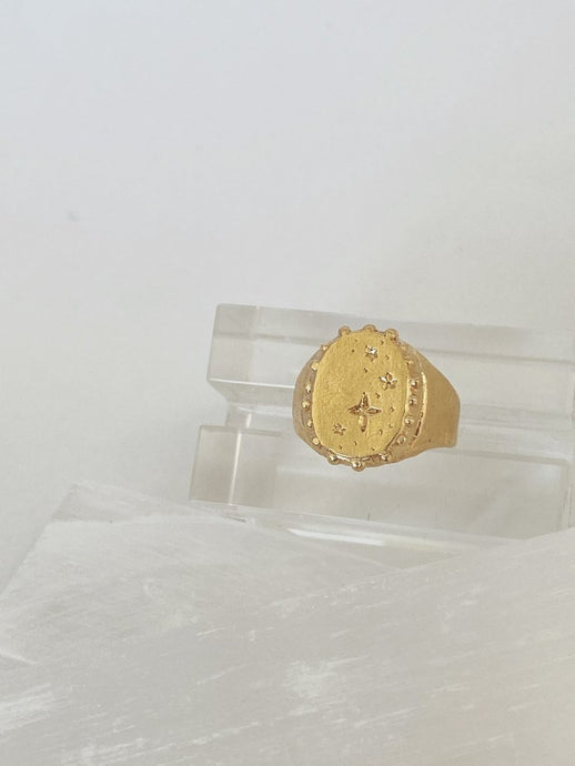 Mercurial Estelle Signet Ring / gold plate
