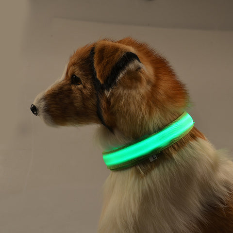 LEd Night-light pet collar