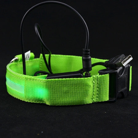 LED Night light Pet Collar