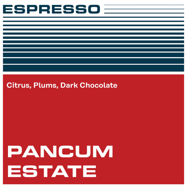 Guatemala Pancum Estate