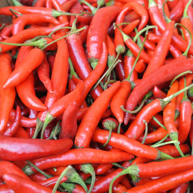 Cayenne, not just a spice, but a beneficial supplement.