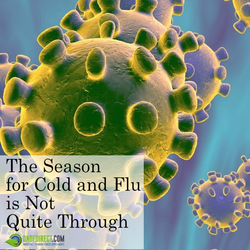 The season for Cold and Flu is not quite through