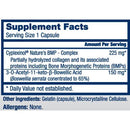 Zycal Bioceuticals Ostinol Advanced 5x Supplement Facts