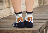 Socks - Super Cute Socks With Dogs