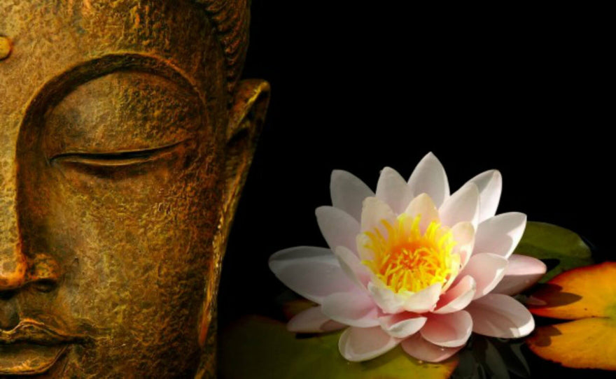 The divine lotus flower symbolism and meaning look4ward store the divine lotus flower symbolism and meaning mightylinksfo