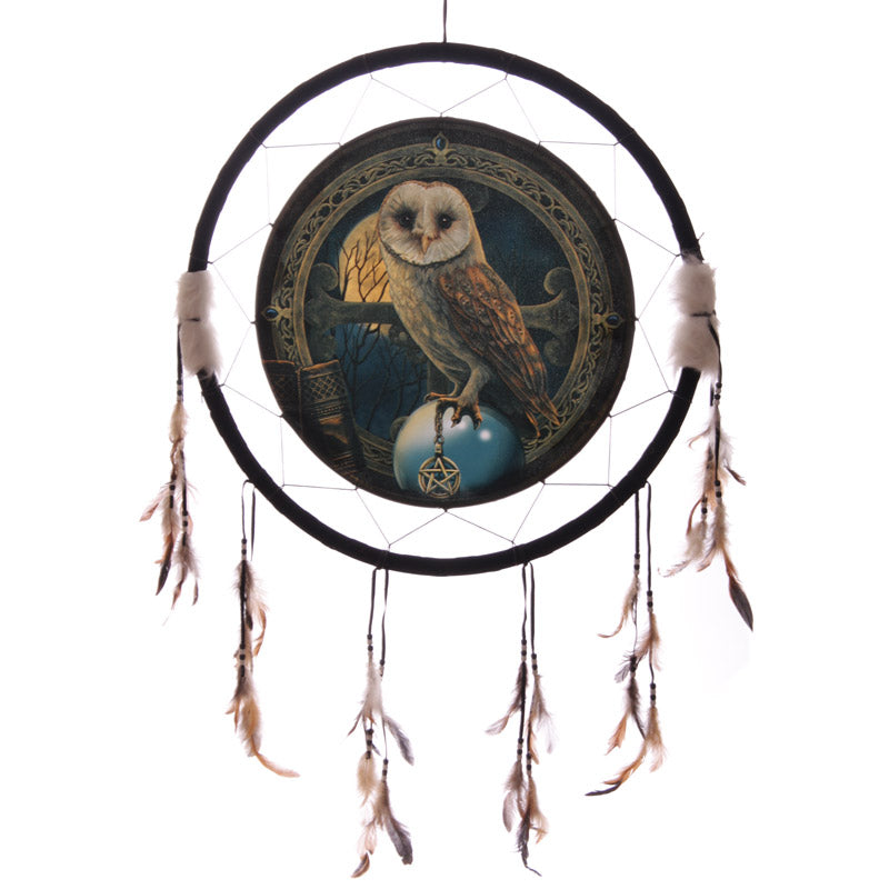 Decorative Magical Barn Owl Dreamcatcher