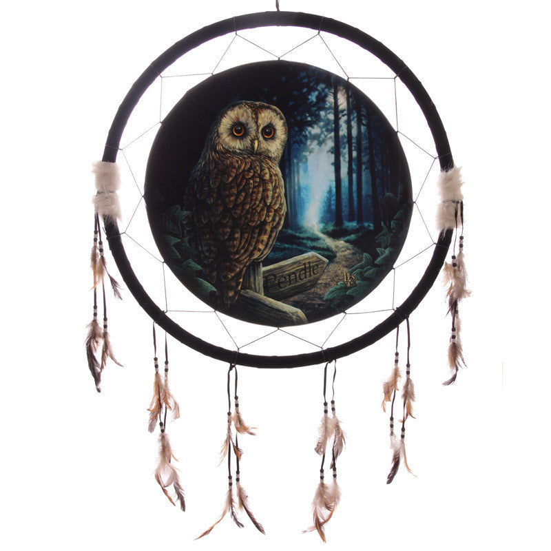 Decorative Fantasy Owl Dreamcatcher Large