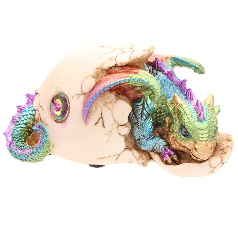 Cute Hatching Baby Dragon Figurine