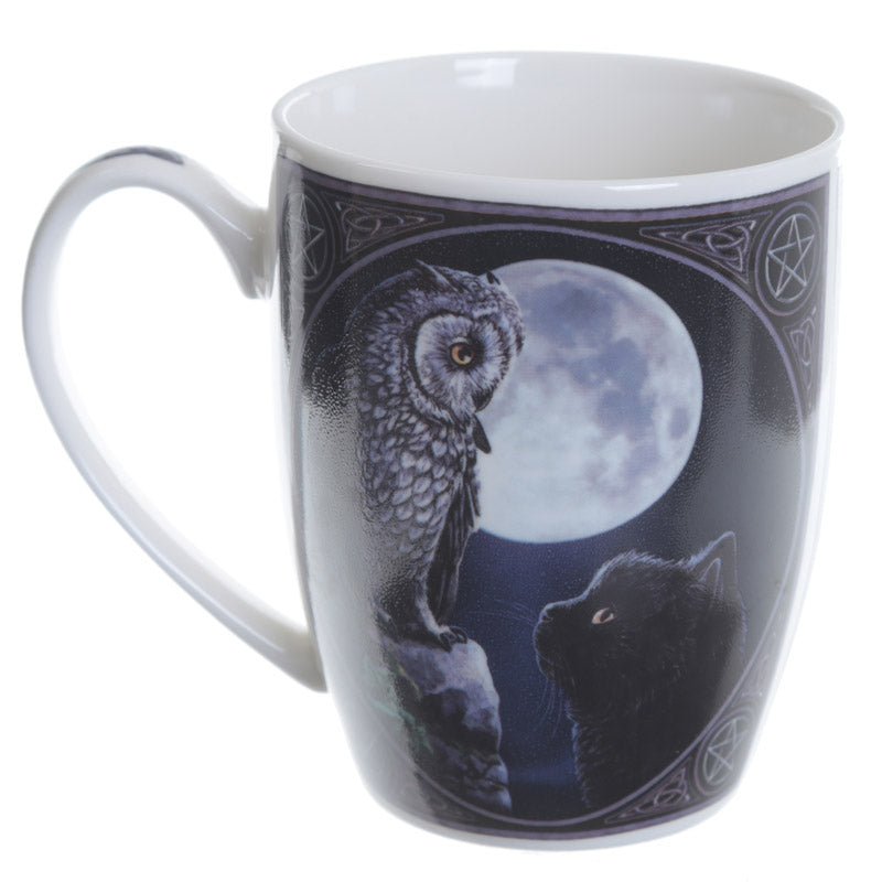 Fantasy New Bone China Mug - Owl and Black Cat