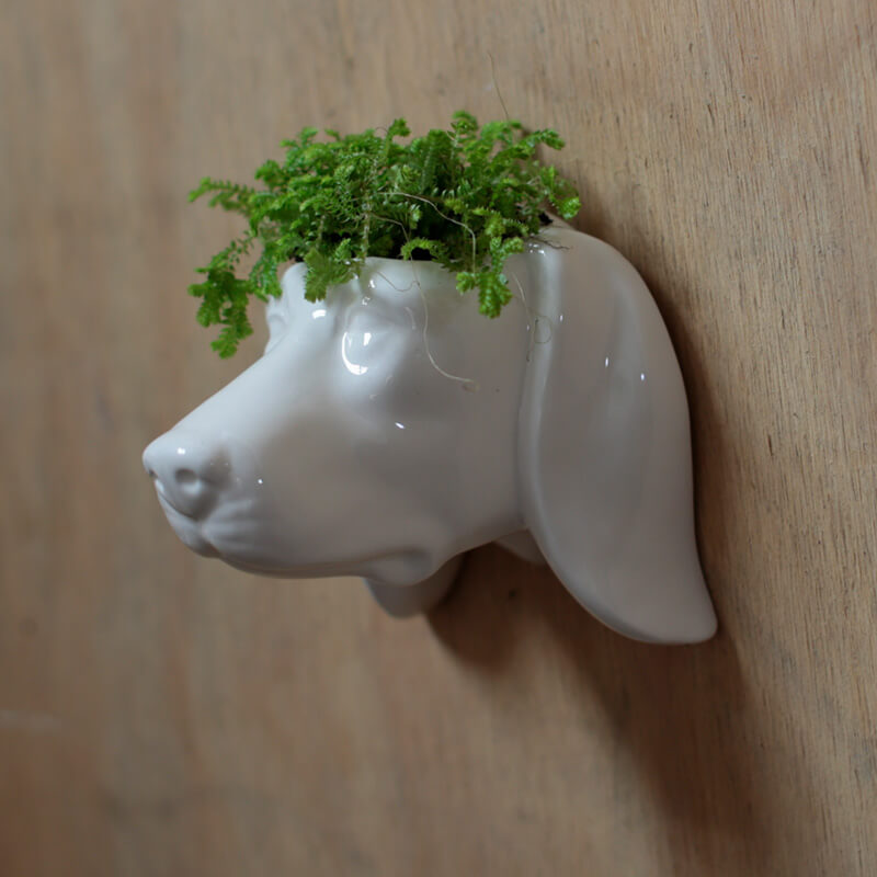 Dog Head Ceramic Indoor Wall Planter