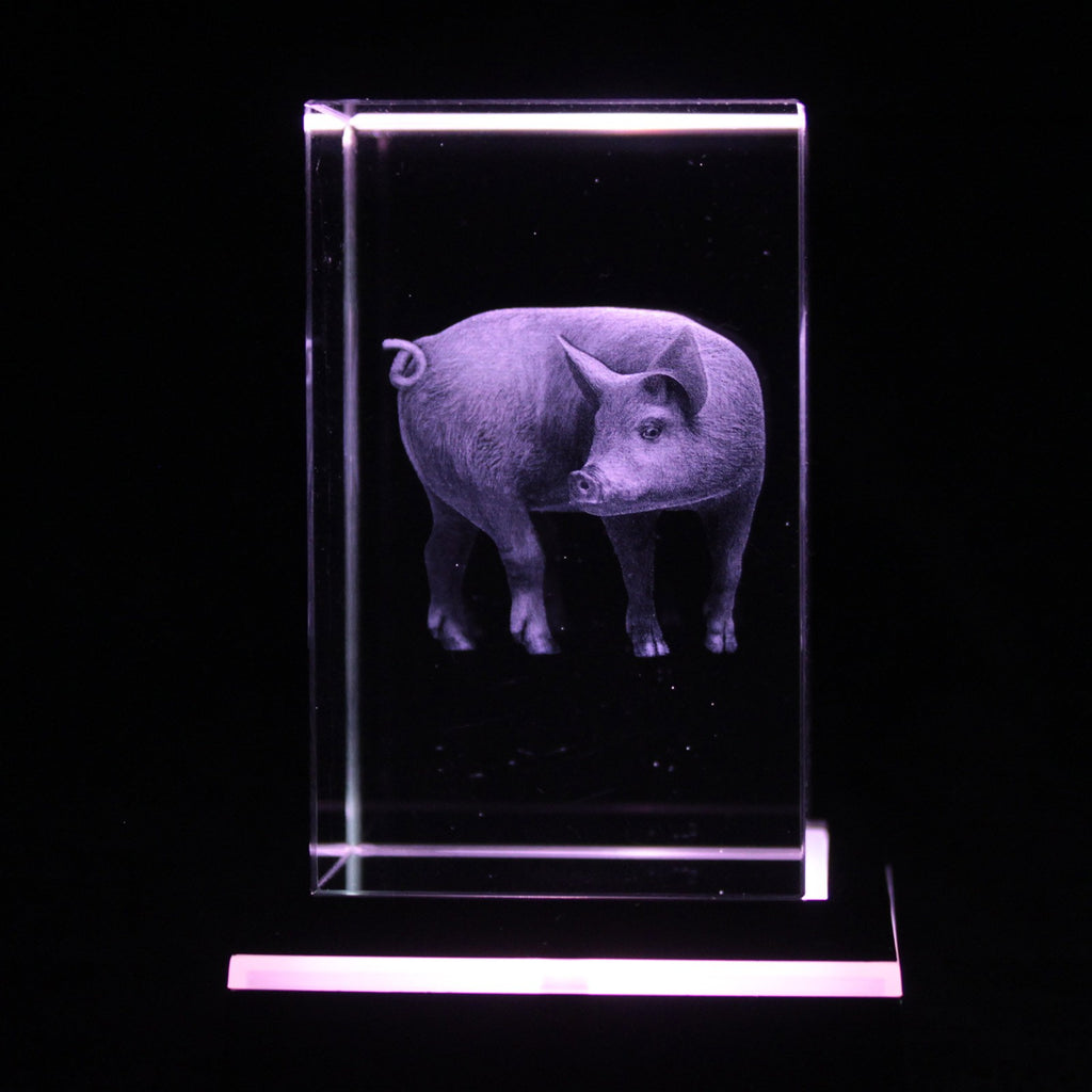 3D Pig Star Crystal Laser Block