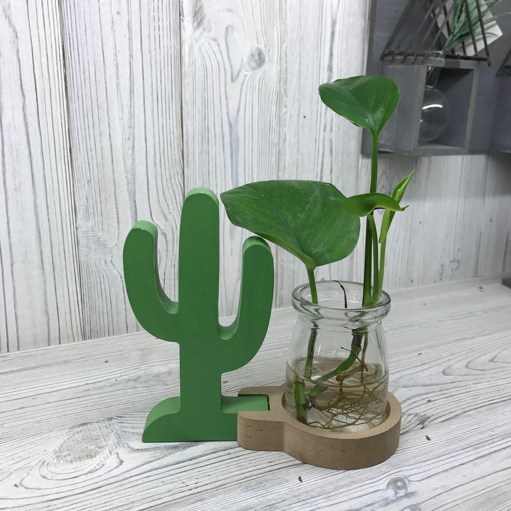Hydroponic Home Decor - One Pot Cactus Design Stand