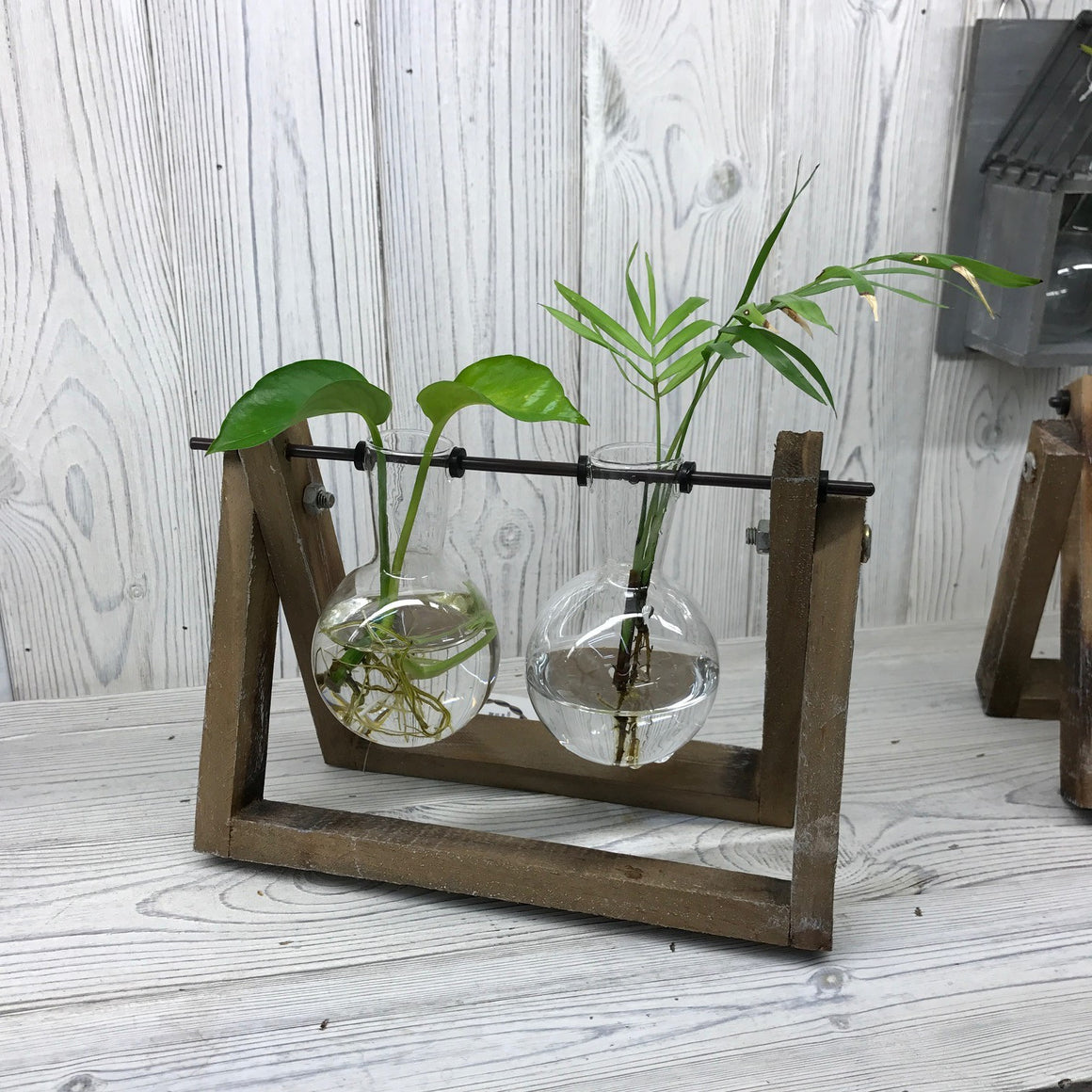 Hydroponic Home Decor - Two Pots Wooden Stand